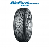 BluEarth Winter V905 95V